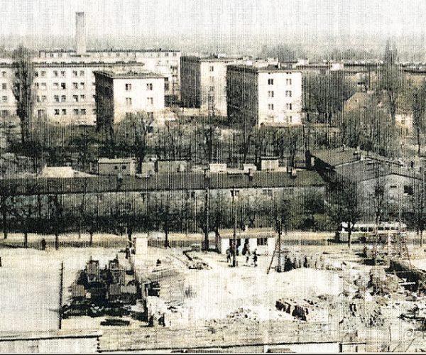 Tartak w Czarkowie